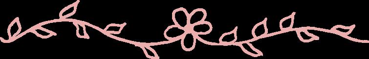 Light-pink-hand-drawn-divider_6-line